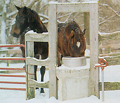 Free Standing Waterer Image 001